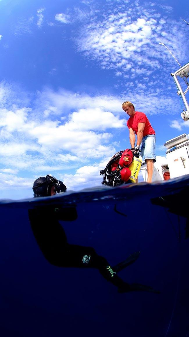 Plongée au corail